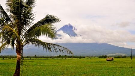 mayon: Mayon Volcano - Bicol Region, Philippines