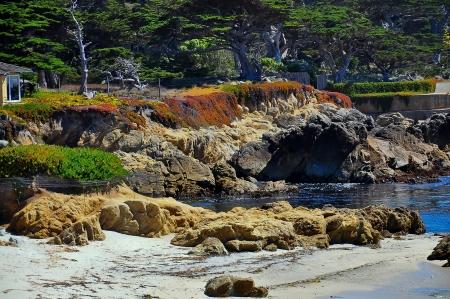 monterey: Cypress Point Lookout - Monterey, California
