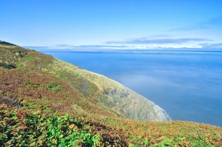 Beautiful Coast - Florence, Oregon Фото со стока