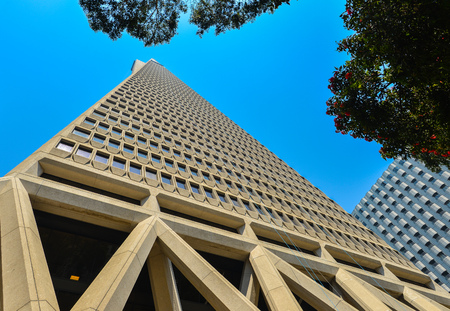 transamerica: Transamerica Pyramid Bldg., San Francisco, California