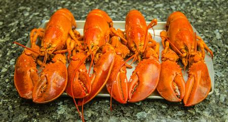 Lobster Quartet