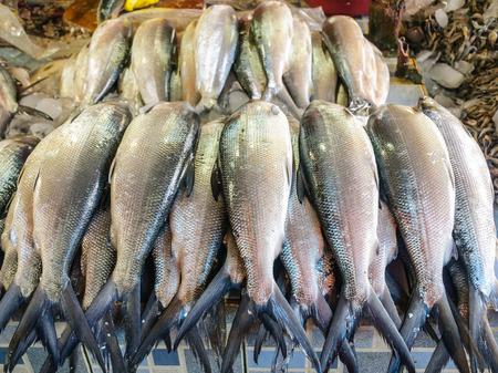 Fresh Philippine Milkfish (Bangus), the countrys National Fish