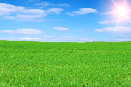 agruculture: Landscape - Green field and blue sky