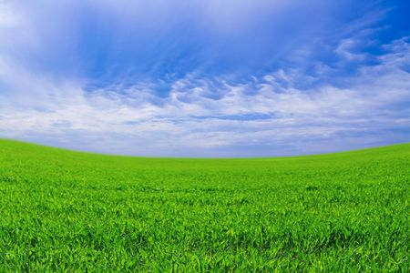Green field against the sky and clouds Stock Photo - 7745677