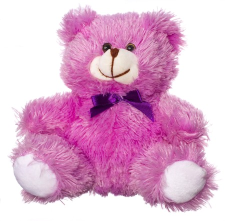teddy bear isolated on a white