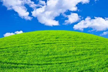 Schönen Feld mit eine grüne Gras und schönen Himmel am Horizont mit fluffy clouds