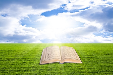 Shine Open Bible On The Grass Stock Photo