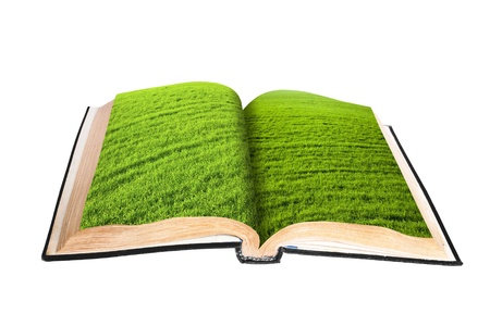 magic book with a landscape isolated on white background