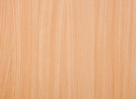 Texture of wood background photo