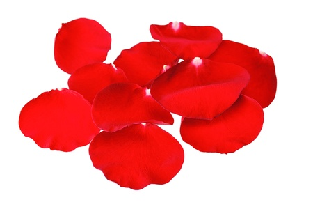 Rose Petals Border Stock Photo - 17313644