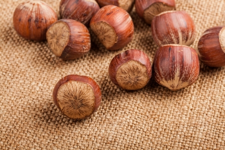 Filberts on a burlap background  Close-up shot Stock Photo - 17475294