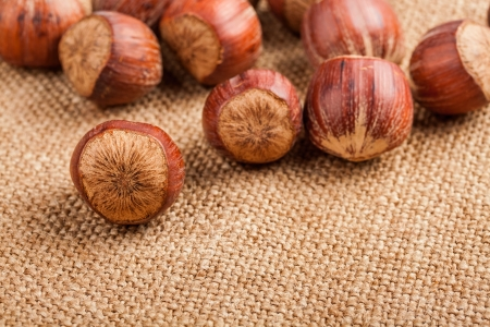 Filberts on a burlap background  Close-up shot Stock Photo - 17475280