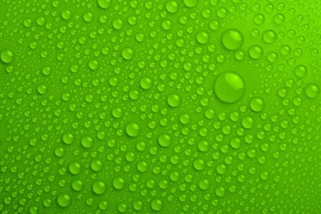 Wassertropfen auf grünem Hintergrund Standard-Bild - 17889871