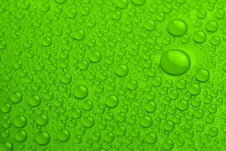 Water drops on green background photo
