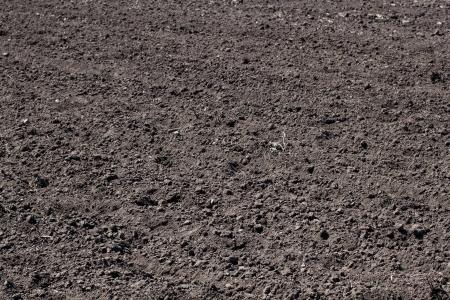 Dry soil closeup photo