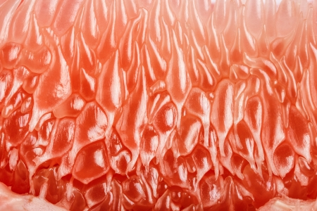 Macro Grapefruit Stock Photo