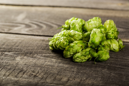 Fresh green hops on a wooden table Banque d'images