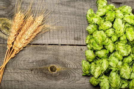 Hops and golden ripe wheat of cone on a old wooden table photo