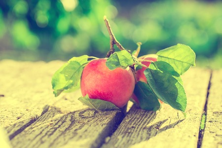 Apples on wooden table over summer bokeh background Stock Photo