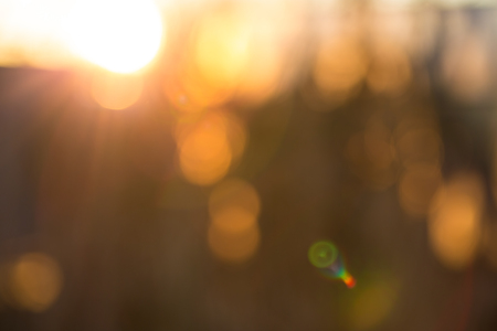 lensflare: Gold desert in sunset, abstract bright blur background for web design, brown colorful background, blurred Stock Photo