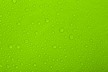 Water Drops On Green Background Stok Fotoğraf