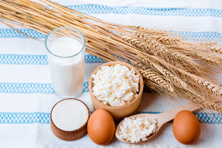 Natural homemade products: milk, cheese, sour cream and eggs on old wooden background with ears of wheat. Stock Photo