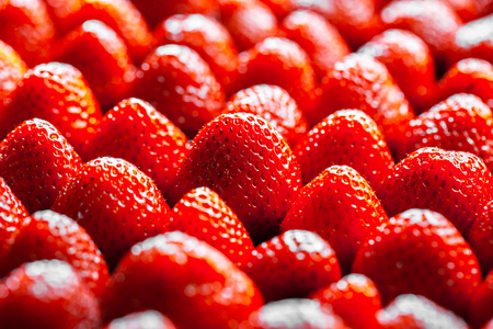 directly: background from freshly harvested strawberries, directly above Stock Photo