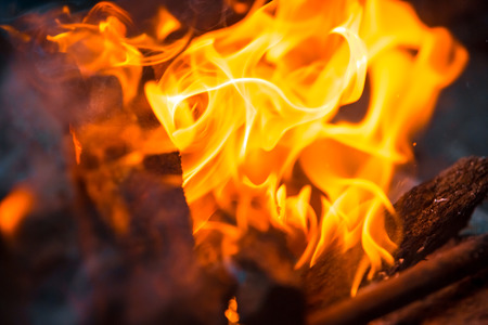 combustible: Beautiful burning fire flame background and coals