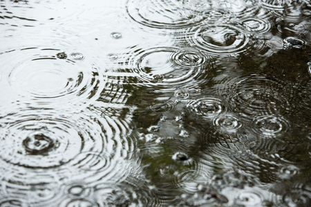drench: Beautiful backgrounds with falling water drops in a puddle in the rain