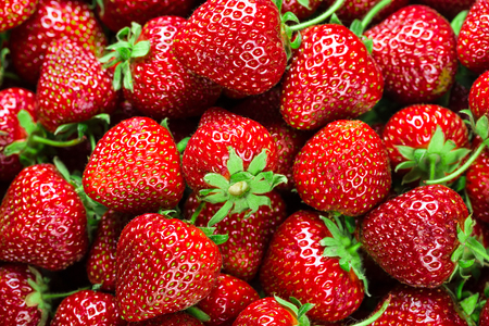 saturated: Fresh Strawberry Background
