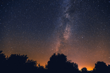 The Milky Way and some trees