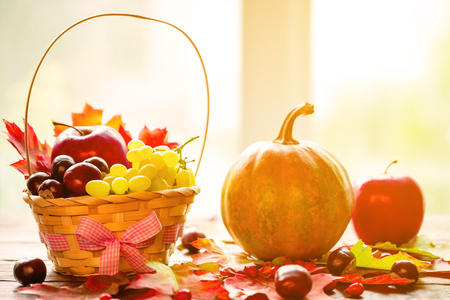 Autumn background basket with yellow leaves, grapes, red apples and pumpkins. Frame autumn harvest on the old boards on the window background with copy space. The layout offers and seasonal holiday card Stock Photo