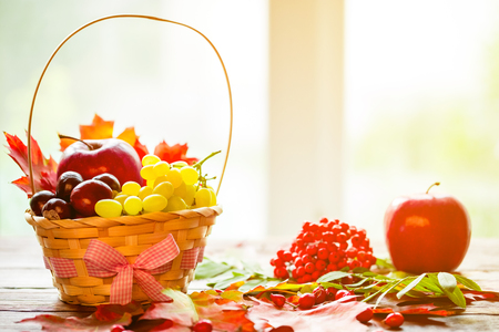 Autumn background with basket with yellow maple leaves, grapes, red apples. Frame of fall harvest on aged wood with copy space. Mock-up for seasonal offers and holiday post card Stock Photo