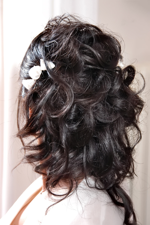 Brunette wedding bride hairstyle back view Stock Photo