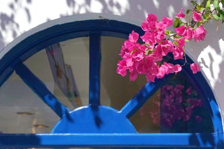 Pink bouganvillea and blue door in Santorini,Cyclades