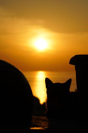 Colorido atardecer visto desde un gato del monasterio de la Virgen María en Paleokastritsa