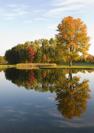 Reflection of the fall colors