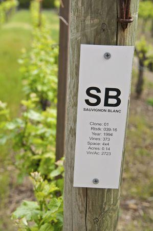 Vineyard Sign