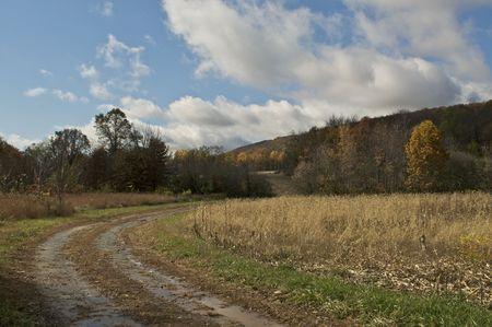 Farm Road in the Fall Stock Photo - 5788924