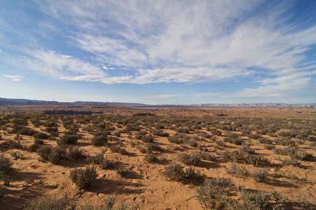 Desierto de Arizona expansivo cerca de p�gina