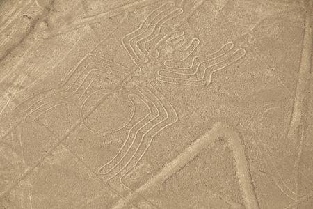 Los geoglifos de ara�a en las l�neas de Nazca en Per�