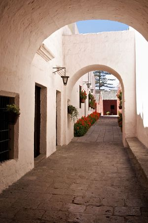 Whitewashed Street