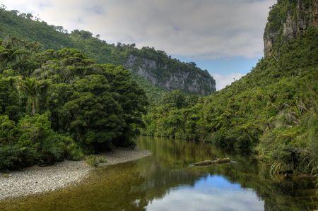 A River Winds through a Tropical Landscape
