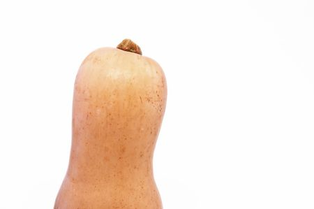 Top of a Butternut Squash against a White Background