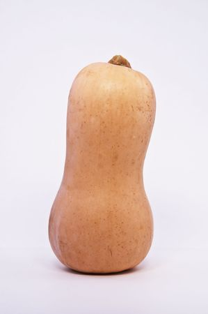 Butternut Squash against a White Background Stock Photo
