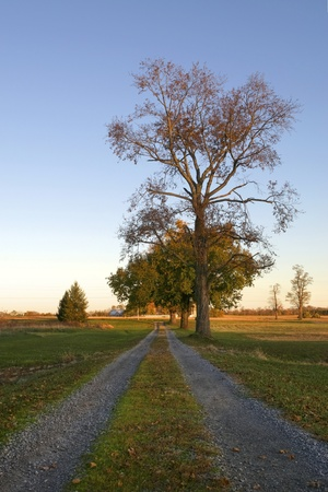 A rural countryside lane on a fall day Stock Photo