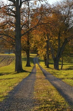 A beautiful country road on an autumn day Stock Photo