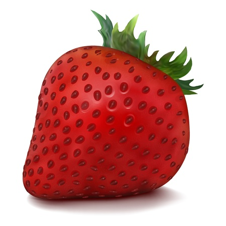 Vector Strawberry isolated on white background Vector