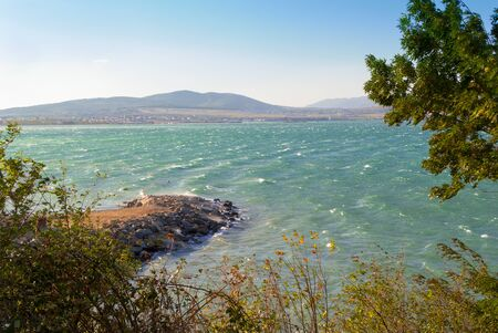 Windy weather at sea background. Storm in Gelendzhik Bay caused by wind from the mountains. Turquoise Sea waves with crest foam. Branches of bending trees and bushes in foreground. Rocky shore.