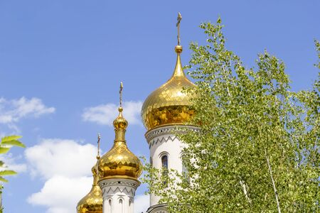 Golden domes of the Orthodox church against the blue sky with a green tree in the foreground 版權商用圖片